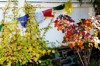 History of Tibetan Prayer Flags